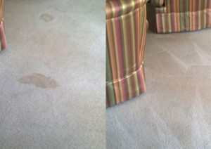 Hudson Spot Removal, Hudson Stain Removal, Ultra Clean Hudson